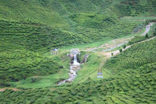 Balikkampungmarch2009 090