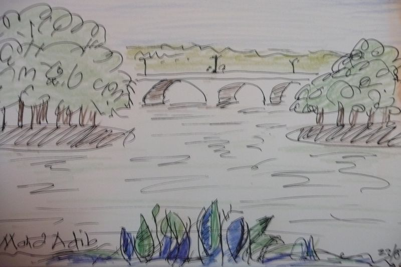 Wetland sketch 001