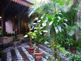 Garden at M Suites