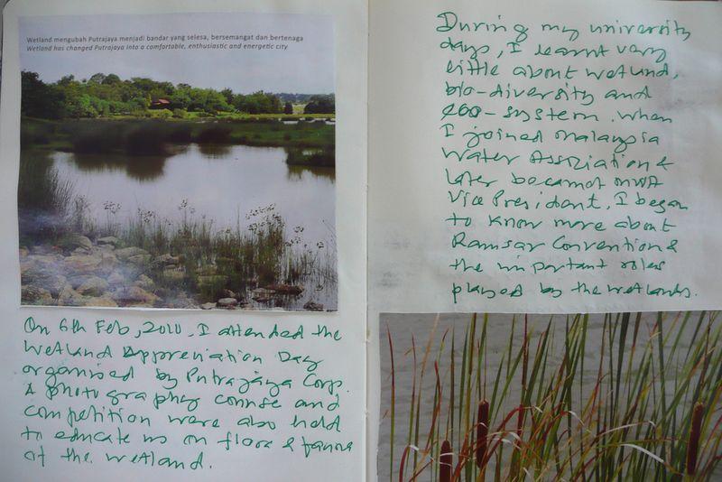 Moleskine wetlands