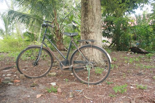 Older single speed