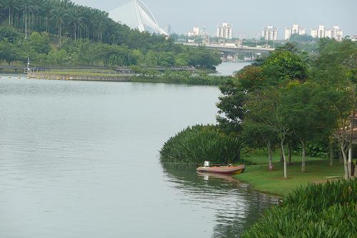 Wetland260709