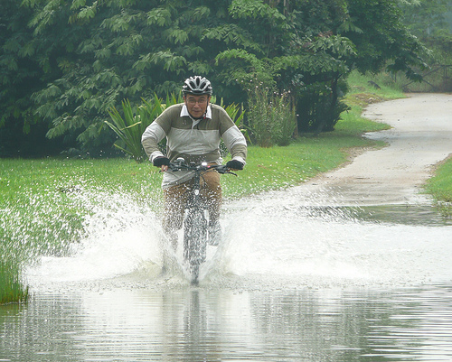 wetland ride#2