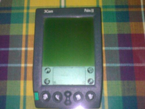 Palm111