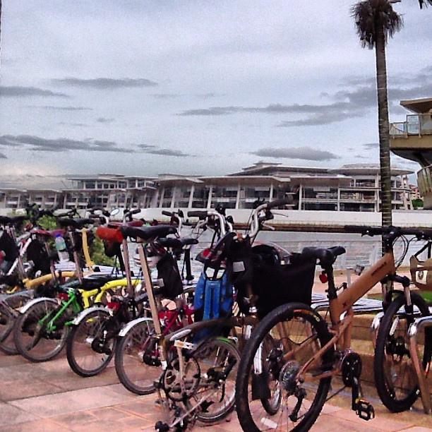 PUR bikes