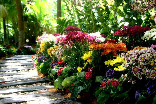 Floria 2010 7-12-2010 10-51-03 AM 3888x2592