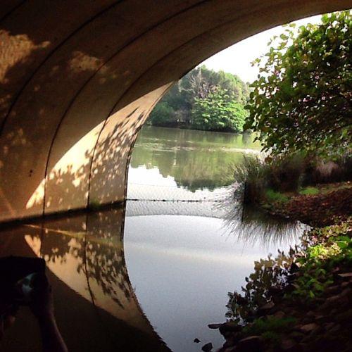 Wetland123