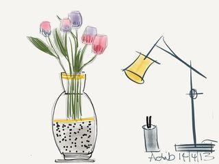 Tulipswood